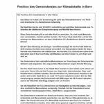 thumbnail of Positionspapier des Gemeinderats zur Klimadebatte in Bern